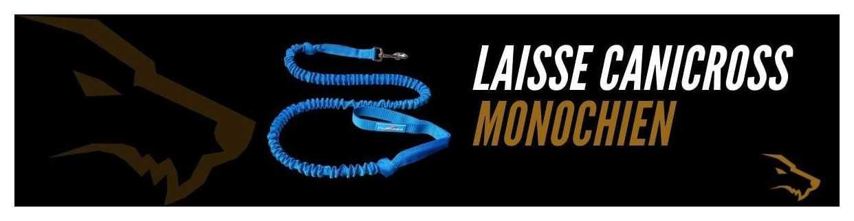 Laisse Canicross Mono Chien : Les Longes de Traction Idéales