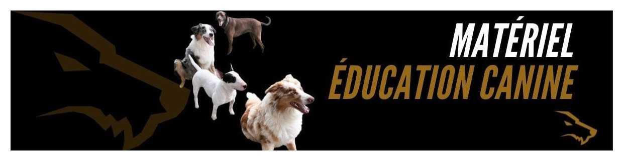 Matériel Education Canine : L'équipement indispensable pour éduquer