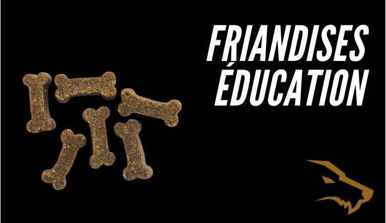 Friandises éducation canine