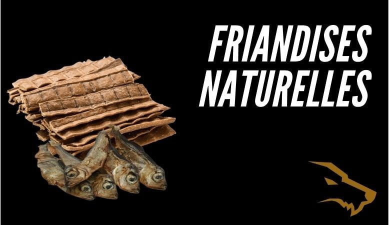 Friandise Naturelle Pour Chien